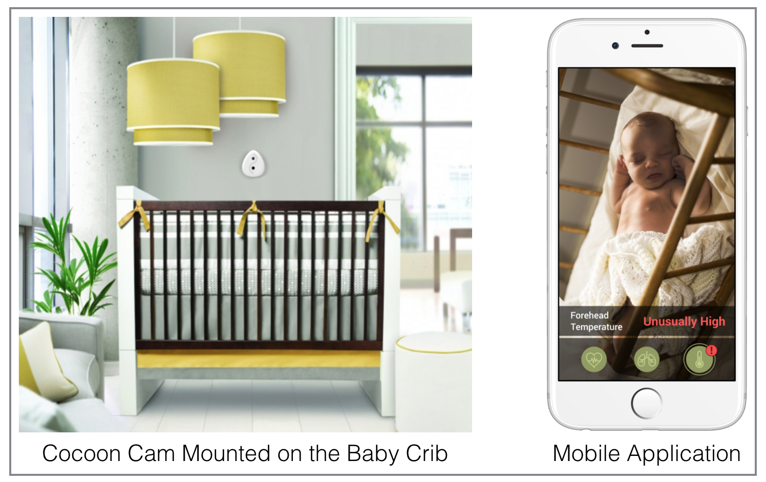 Cocoon Cam   Product Image