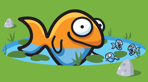 A big fish in a small pond the benefits of a smaller for Big fish in a small pond