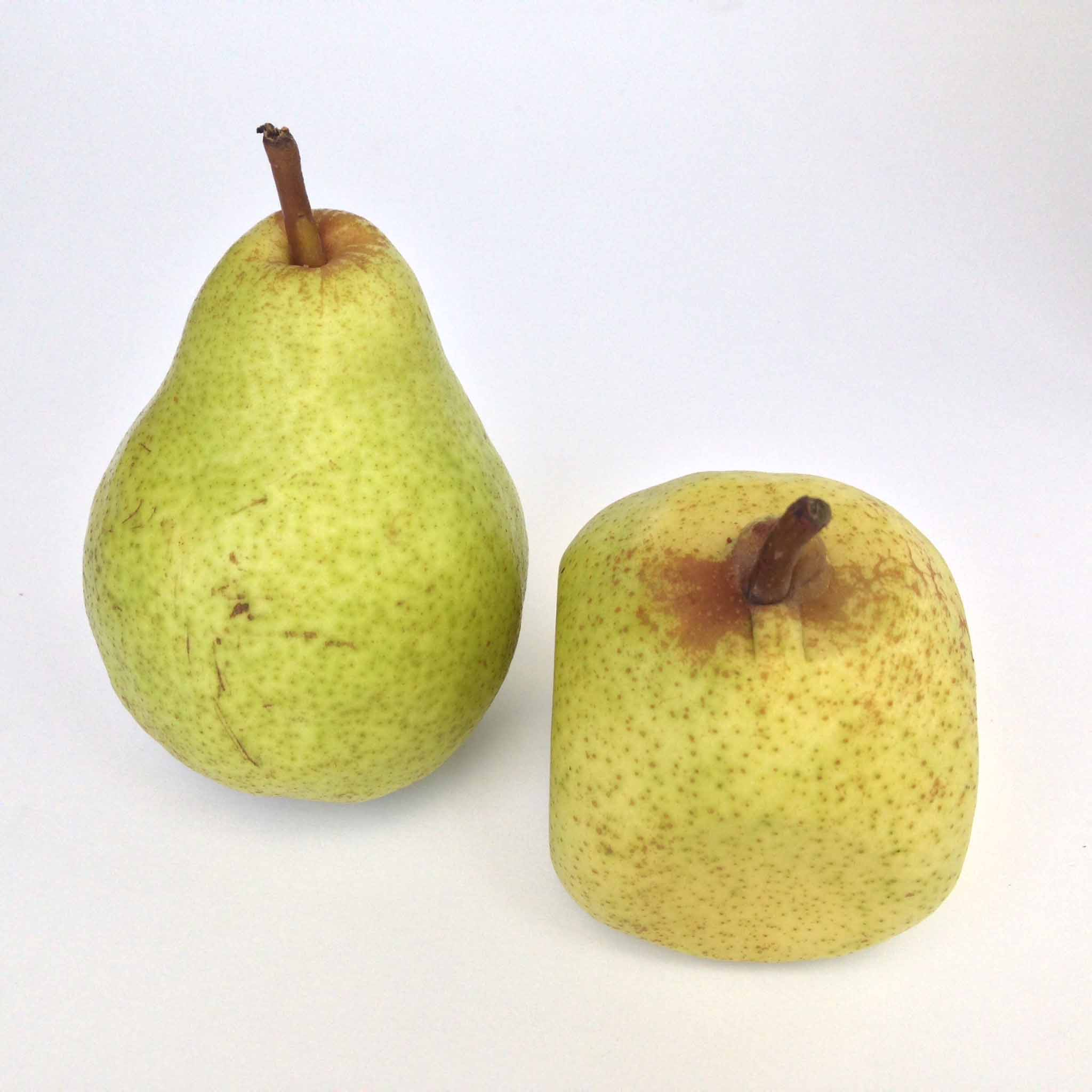 Has Square gone pear-shaped? | VatorNews