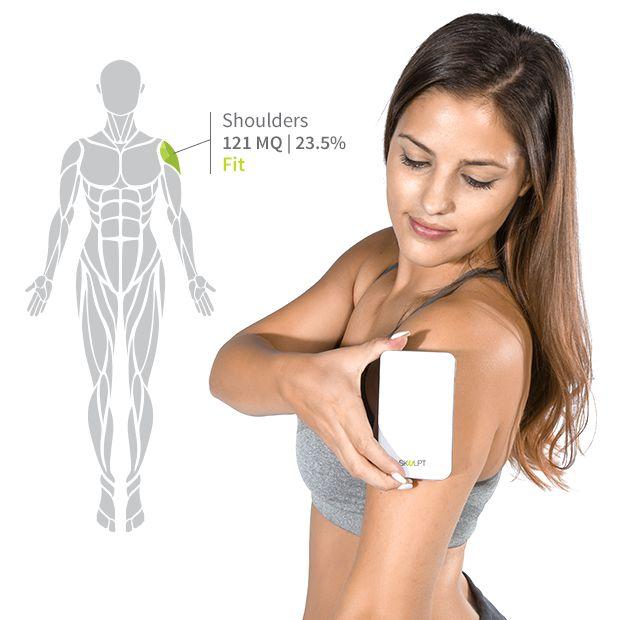 Body fat percentage measure device
